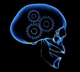 gears in skull